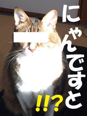 Img_2100_2
